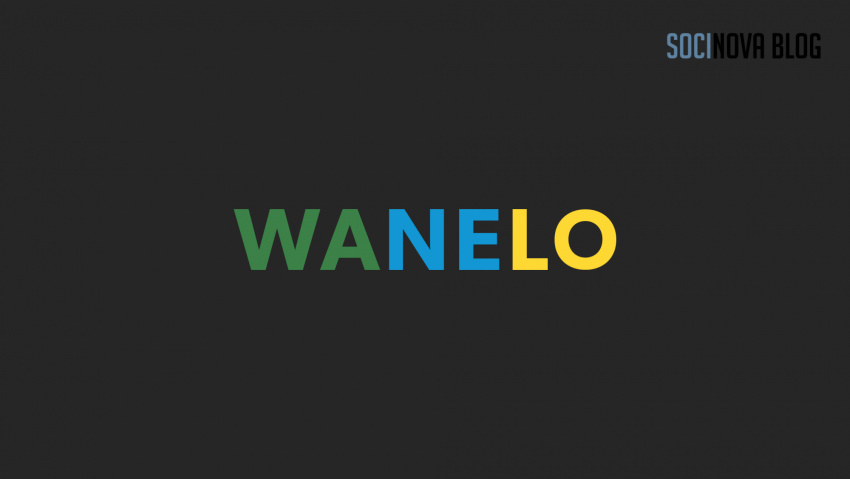 wanelo for business promotion