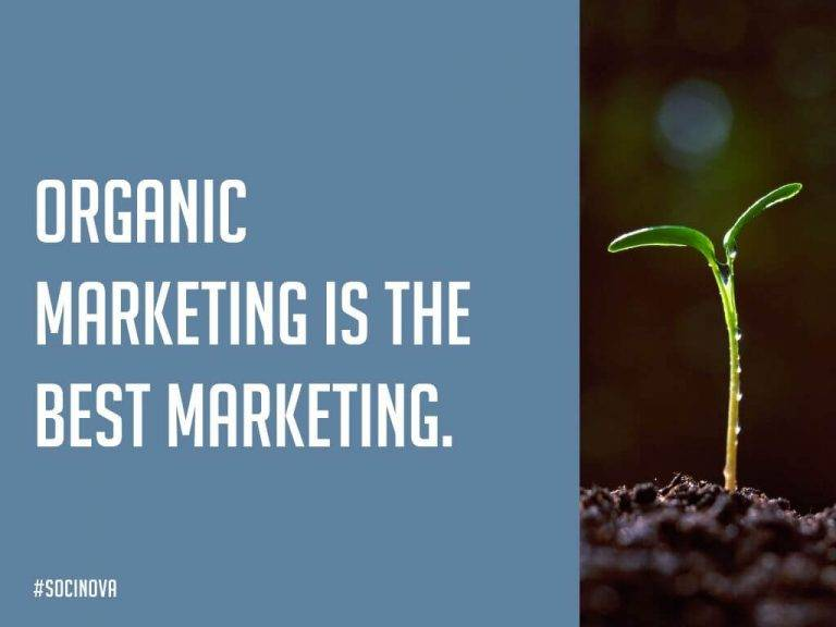 Organic Social Media Marketing Services for Small Businesses